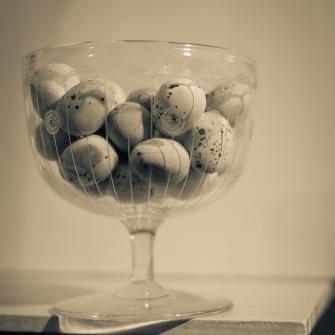 Still Life Photography by Eryl Shields