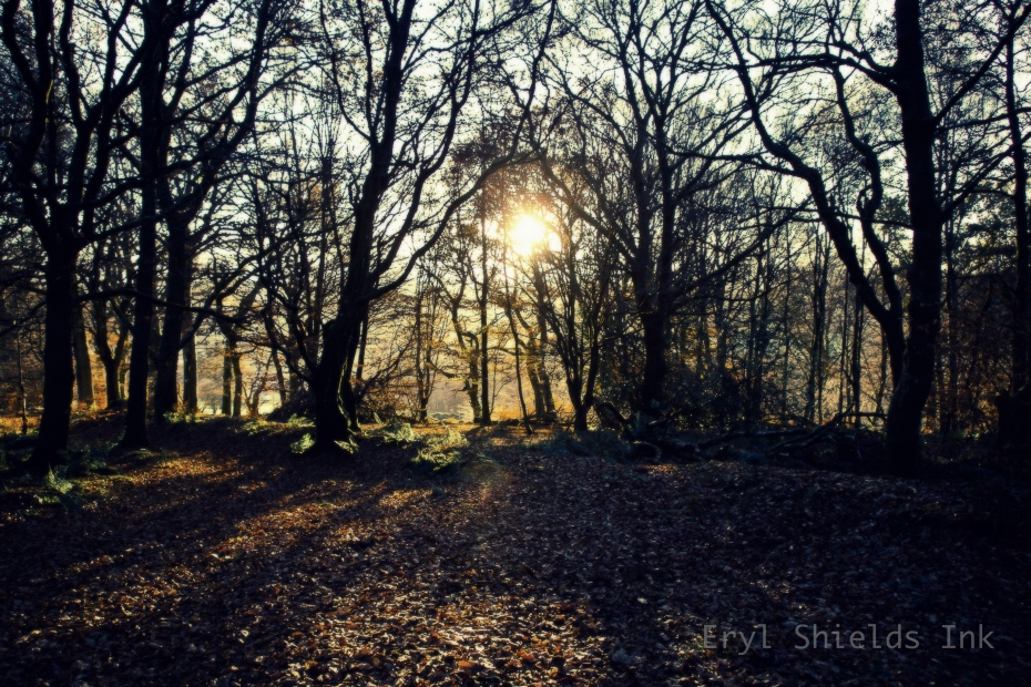 Landscape photography by Eryl Shields