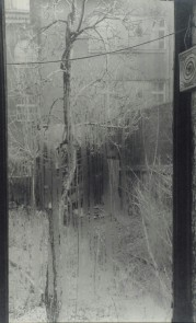 One of Sudek's 'From the Window of My Atelier' series. I love these photographs because they're not 'of' something, but 'from' somewhere: this is what the world, not just a part of it, looks like from a tiny spot within it, at a very specific moment in time. It's both local and universal.